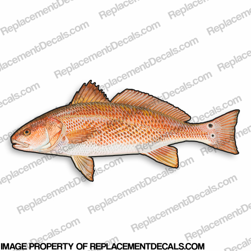 Red Drum Decal - 9""