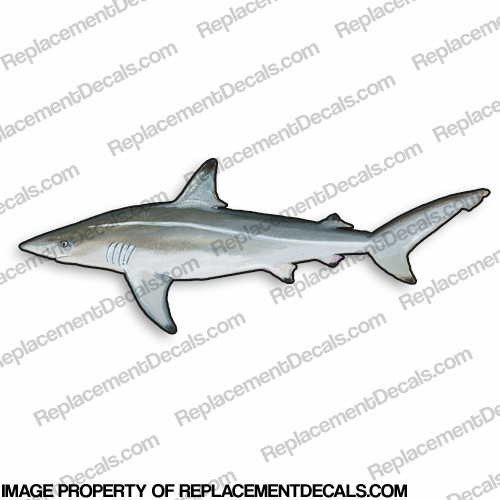 Shark Decal - 9""